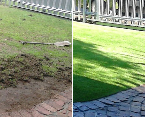 Artificial Grass Before & After Images