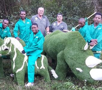 Durban Artificial Grass Supplier South Africa